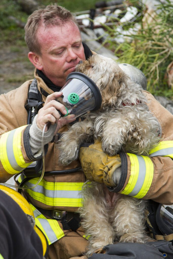 Dog says thank you to firefighter